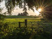 Blofield evening