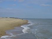 Minsmere Coast