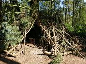 Framed. Wood Pile Shelter