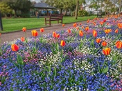 Colourful Manor Gardens