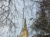 Norwich Cathedral Through bare branches
