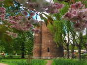 Cow Tower framed by spring blooms