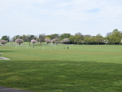 Normanston Park
