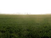Fenland drought