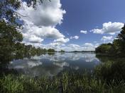 In the Waveney Valley near Harleston