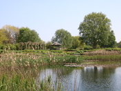 Glorious Pensthorpe