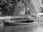 Sunken boat at Careys meadow