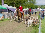 Hadleigh May show 2017
