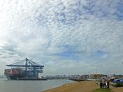 Losing trade to London Gateway :(
