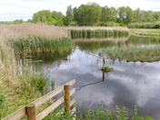 iwitters meet at the Hawk and Owl Trust Sculthorpe