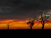 Sunset near Walkern in Hertfordshire.