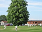 Cleeve Cricket.