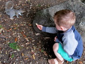 Happiness feeding the squirrels 1