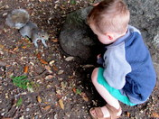 Happiness feeding the squirrels 2
