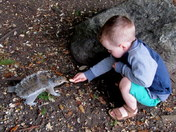 Happiness feeding the squirrels 6