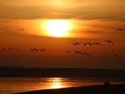 Happines: Sunrise