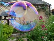 through the Bubbles.
