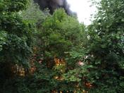 Fairlands Fire 12-June 2017
