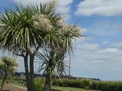 Costa del Felixstowe
