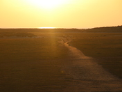Holkham Setting Sun
