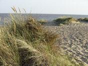Walberswick and Woodbridge - Suffolk Day