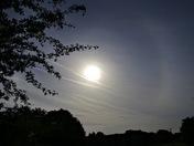Summer solstice morning