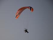 Transport: Paragliders