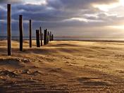 Wind across the sand.