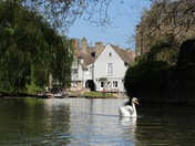 In my graden and punting on the Cam.