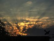 Crepuscular Rays over Harleston at dawn