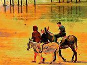 Donkey Rides on Weston Beach
