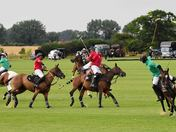 Polo AT Langley Abby