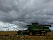 Harvesting barley under cloudy Norfolk sky