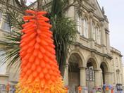 Town Hall Colour.