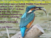 iwitters Meet this Thursday 20/7/17 10-30am Lackford Lakes