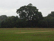 Cricket washout in Essex ...