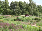 Green Fingers - Pensthorpe gardeners