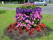 Public Floral Display