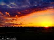 Cranbrook Landscape Sunset