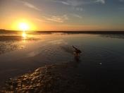 Wells sunset...