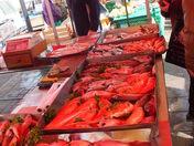 Malta, fishing village market.