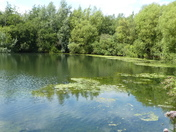 The lake at Needham