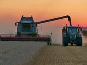 Harvest Sunset 2017