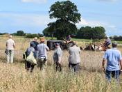 Olde Tyme Harvest