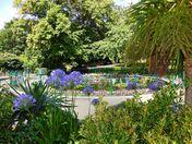 Grove Park. Weston-super-Mare