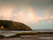 Weston share the joys of rainbow with Wales.