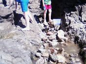Ethan and Luke Smith exploring the rock pools in Weston