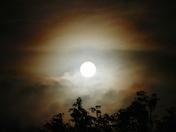 Harvest Moon ?