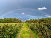 Fen Rainbow