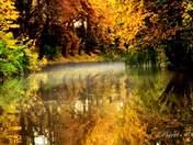 Autumn has arrived